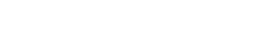 chigiz logo
